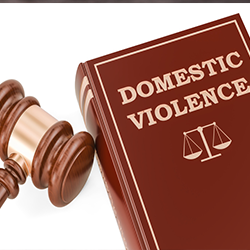 Model Policy Domestic Violence